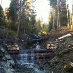 Construction de barrages en bois
